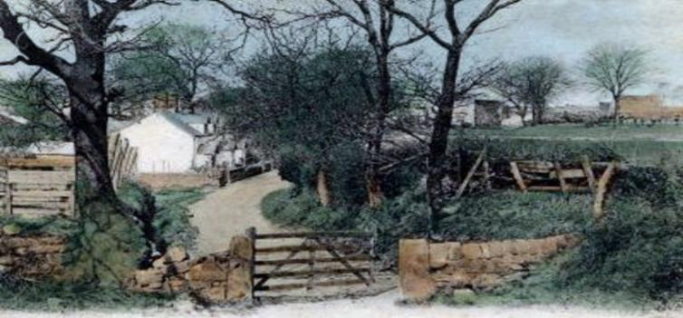 A Painting of a Lane in Prenton 1907